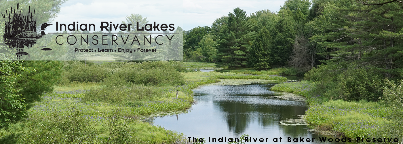 Indian River Lakes Conservancy